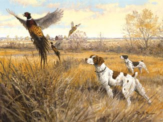 Training Hunting Dogs With Live Birds